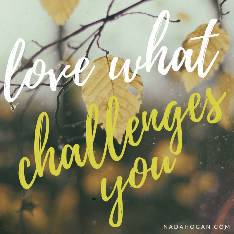 Love What Challenges You